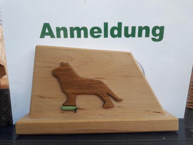 Braunschweiger Löwe WT Anfänger und Offene